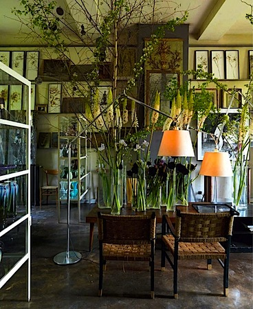 Claire Basler 12