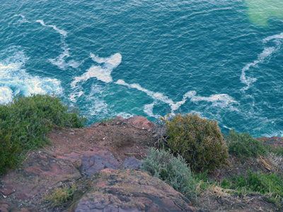 High sea cliff's edge: Don't look down, of course I did!