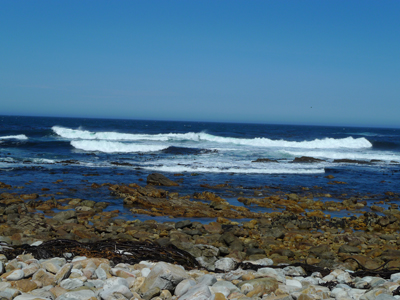 Crashing Waves at Cape of Good Hope