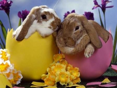 Legend of Easter Bunny