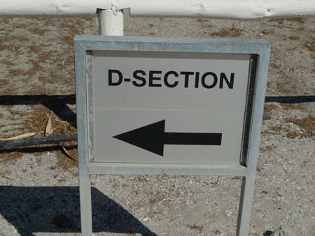 robben-island-d-section