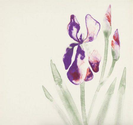 Flower No. 2