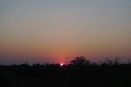 <B>On Safari:</B> Sunrise<em> to </em>Sunset