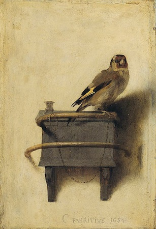 the goldfinch fabritius