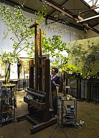 claire basler 1