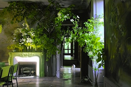 claire basler 10