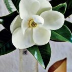 Flower No. 4